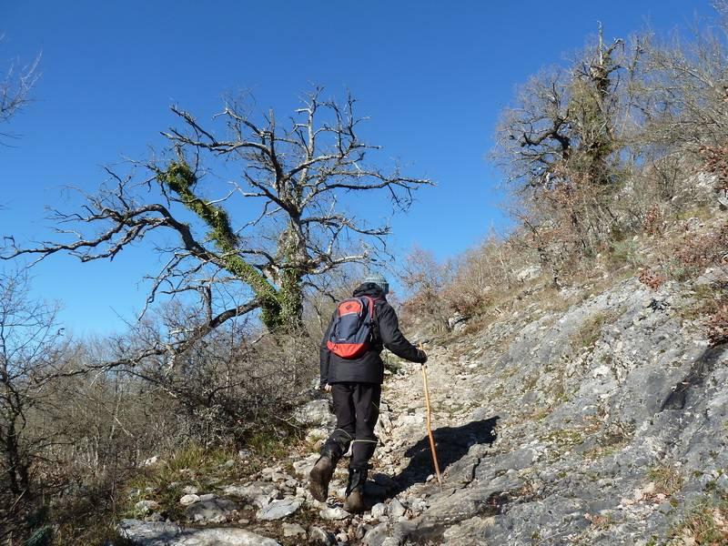 ALGORRI (El viejo camino de Lakuntza) P1100955_resize