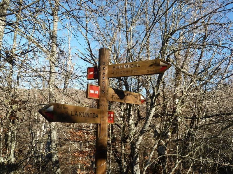 ALGORRI (El viejo camino de Lakuntza) P1100958_resize