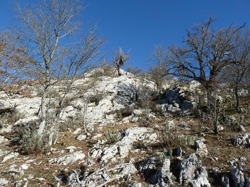 ALGORRI (El viejo camino de Lakuntza) P1100960_resize