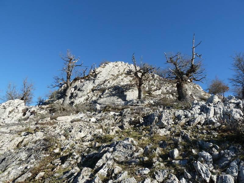 ALGORRI (El viejo camino de Lakuntza) P1100961_resize