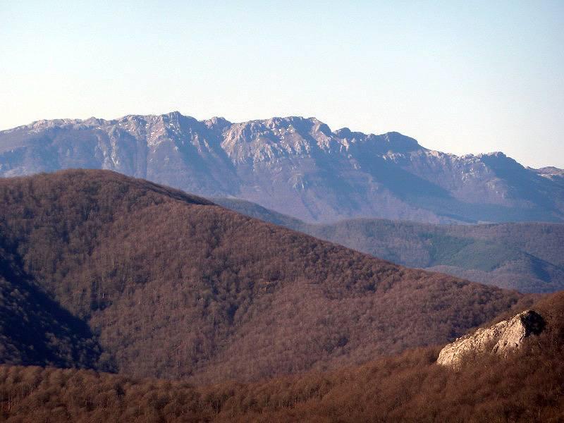 ALGORRI (El viejo camino de Lakuntza) P1100972_resize