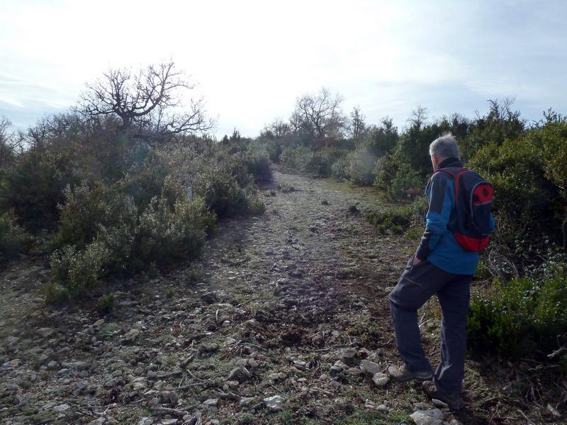 MENDIBIBILA Y ARBURU (Por los peñascos de Sabando) P1120128_resize