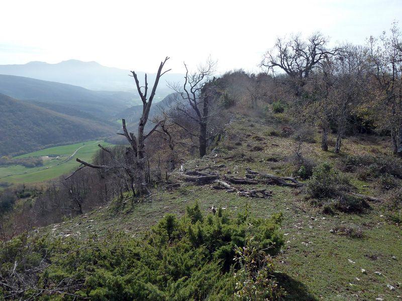 MENDIBIBILA Y ARBURU (Por los peñascos de Sabando) P1120135_resize