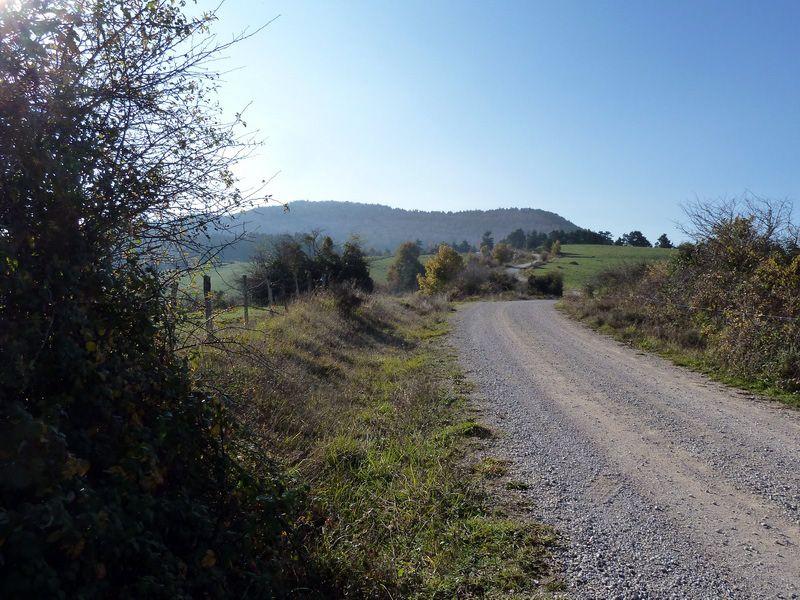 BEIEGU (Un paseo para disfrutar) P1120088_resize