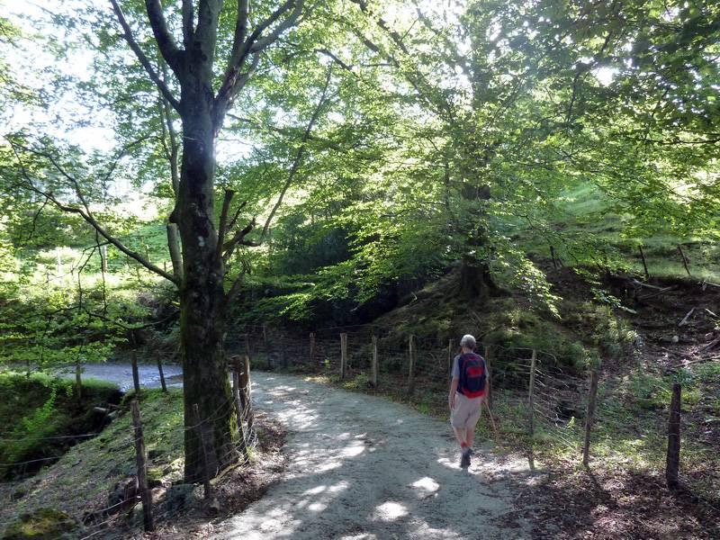 BELITZ (Un paseo sofocante) P1110830_resize