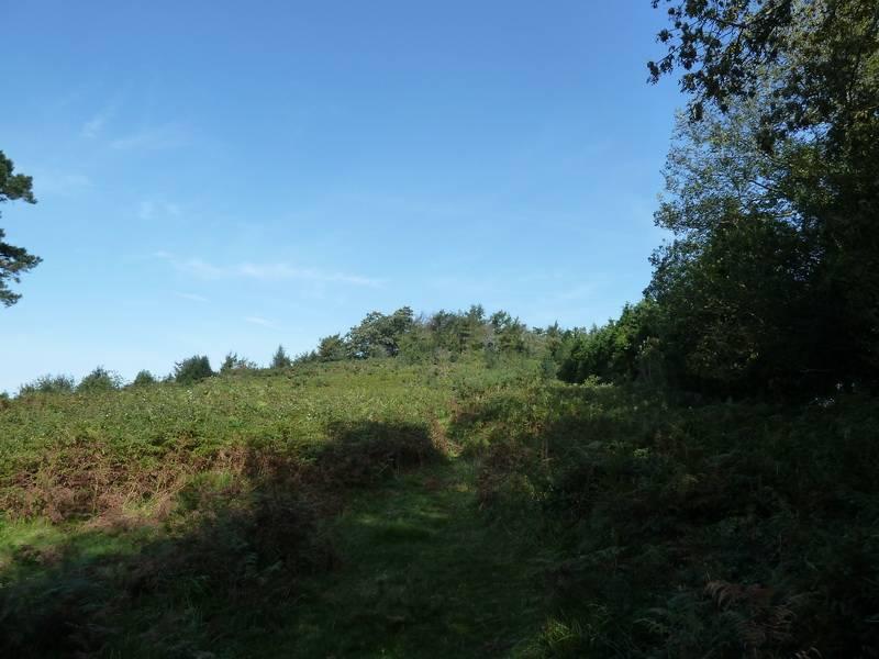 BELITZ (Un paseo sofocante) P1110834_resize
