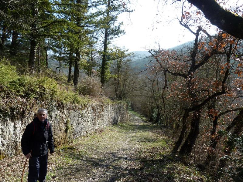 EGULBATI (Nieve y tranquilidad en el valle de Egüés) P1120504_resize