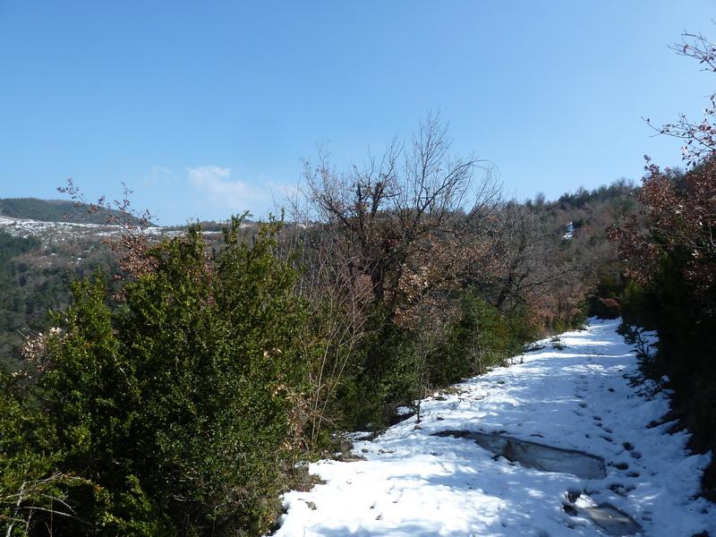EGULBATI (Nieve y tranquilidad en el valle de Egüés) P1120507_resize
