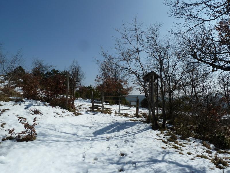 EGULBATI (Nieve y tranquilidad en el valle de Egüés) P1120509_resize