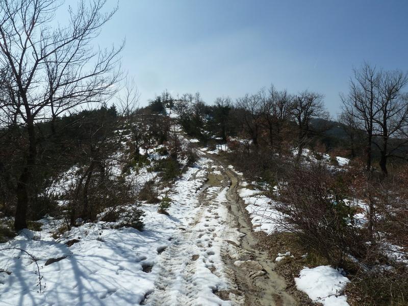 EGULBATI (Nieve y tranquilidad en el valle de Egüés) P1120510_resize