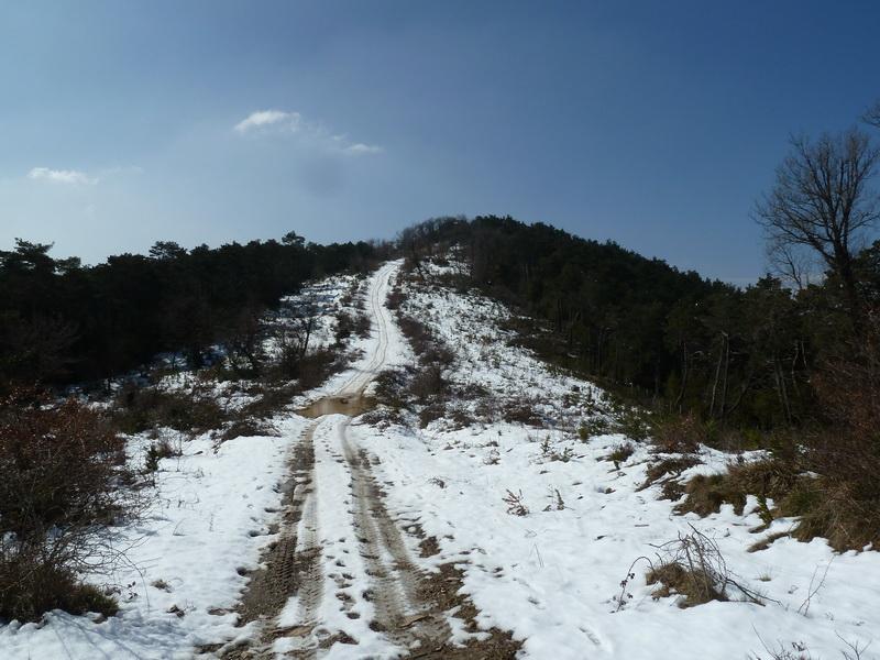 EGULBATI (Nieve y tranquilidad en el valle de Egüés) P1120512_resize