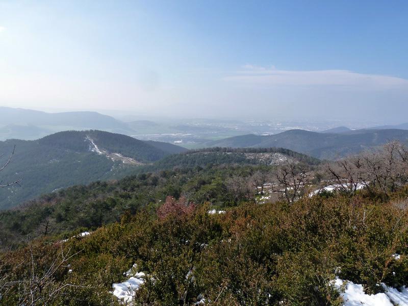 EGULBATI (Nieve y tranquilidad en el valle de Egüés) P1120517_resize