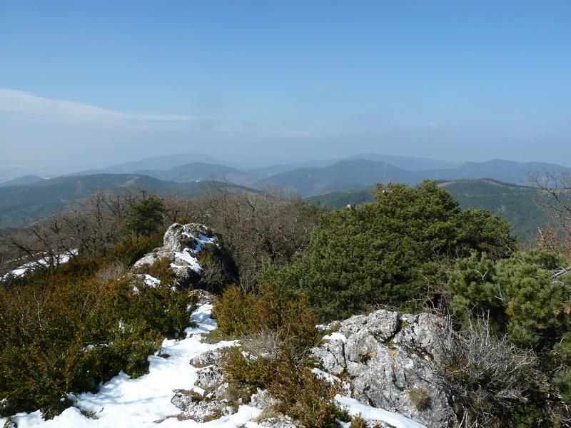 EGULBATI (Nieve y tranquilidad en el valle de Egüés) P1120518_resize