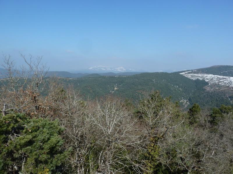 EGULBATI (Nieve y tranquilidad en el valle de Egüés) P1120519_resize