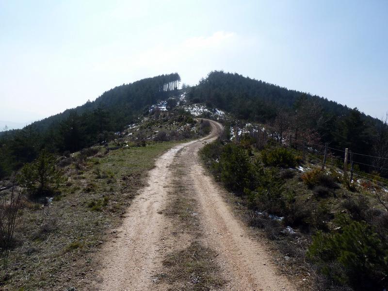 EGULBATI (Nieve y tranquilidad en el valle de Egüés) P1120524_resize