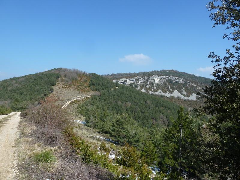 EGULBATI (Nieve y tranquilidad en el valle de Egüés) P1120525_resize