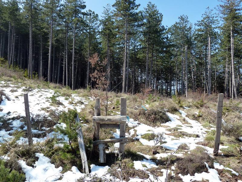 EGULBATI (Nieve y tranquilidad en el valle de Egüés) P1120526_resize