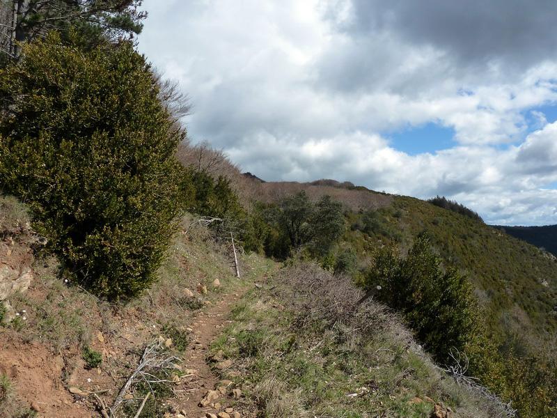 KARRASKAL (Otra cima de la sierra de Alaitz) P1120652_resize