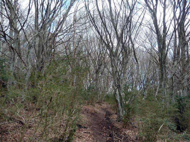 KARRASKAL (Otra cima de la sierra de Alaitz) P1120654_resize