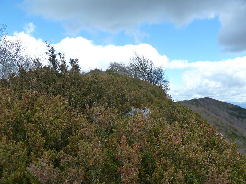 KARRASKAL (Otra cima de la sierra de Alaitz) P1120658_resize
