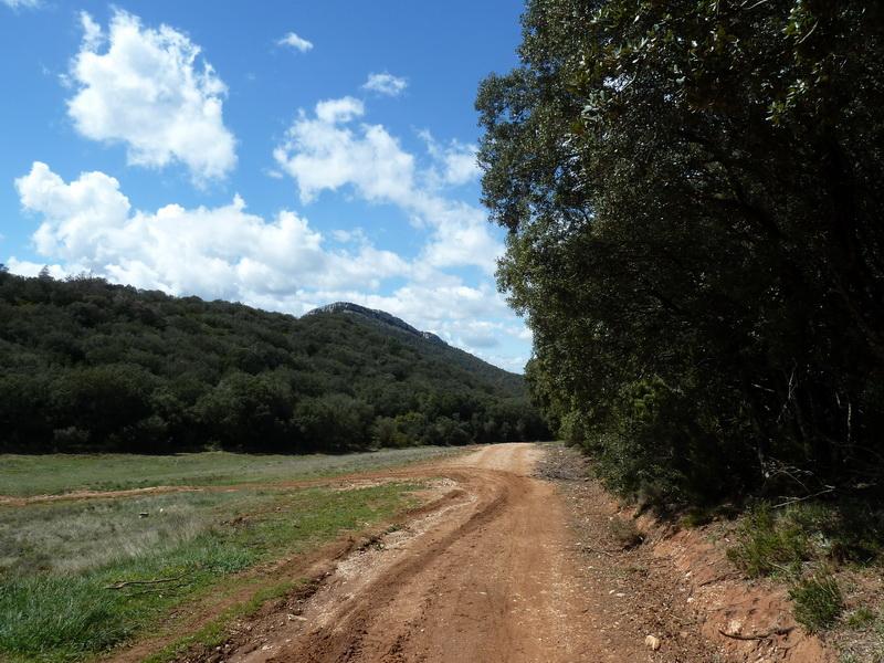 KARRASKAL (Otra cima de la sierra de Alaitz) P1120679_resize