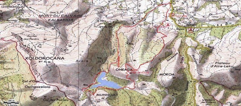 ONEAGA (El pulmón de Ibardin) Oneaga
