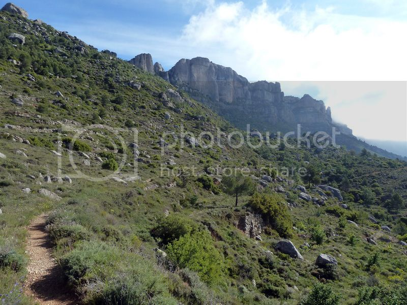 ROCA FALCONERA (El paseo de las águilas en el Montsant) P1100013_resize