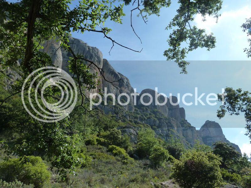 ROCA FALCONERA (El paseo de las águilas en el Montsant) P1100017_resize