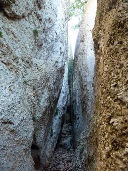 ROCA FALCONERA (El paseo de las águilas en el Montsant) P1100020_resize