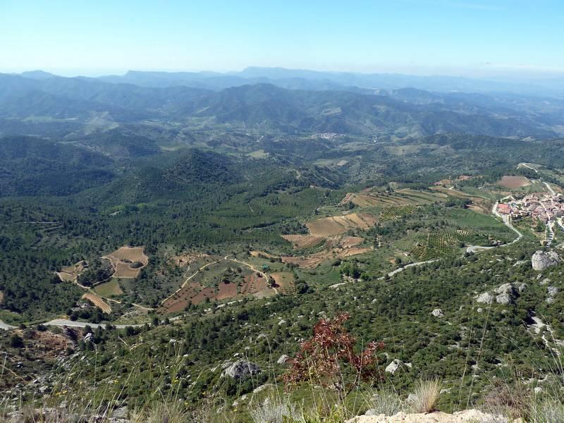 ROCA FALCONERA (El paseo de las águilas en el Montsant) P1100029_resize