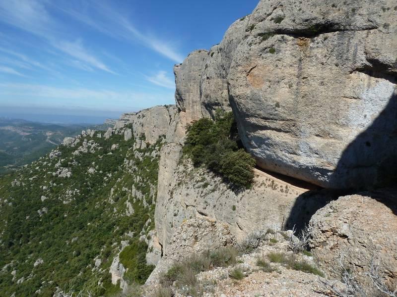 ROCA FALCONERA (El paseo de las águilas en el Montsant) P1100043_resize