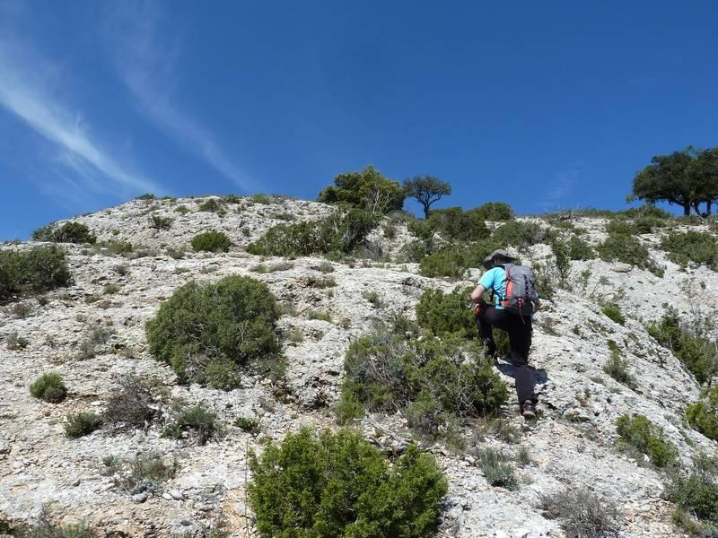 ROCA FALCONERA (El paseo de las águilas en el Montsant) P1100048_resize