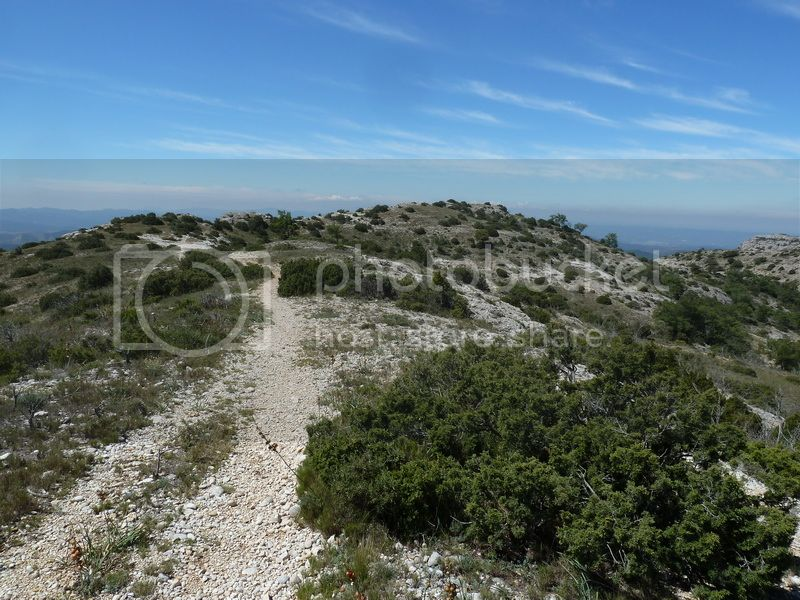 ROCA FALCONERA (El paseo de las águilas en el Montsant) P1100053_resize