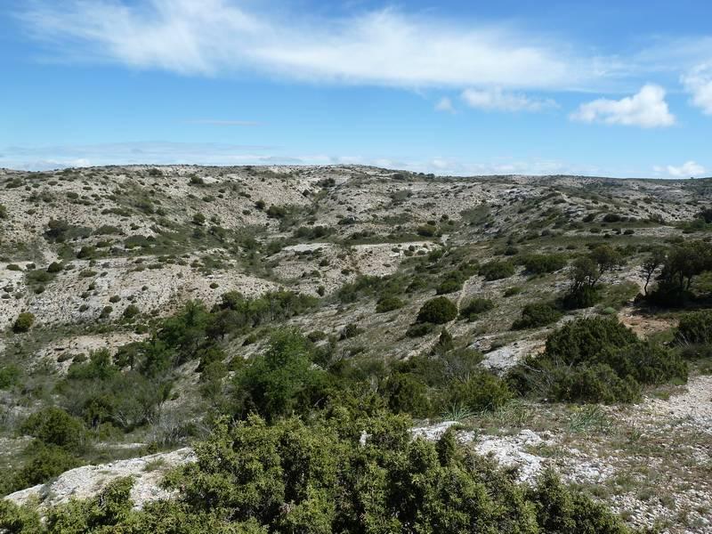 ROCA FALCONERA (El paseo de las águilas en el Montsant) P1100056_resize