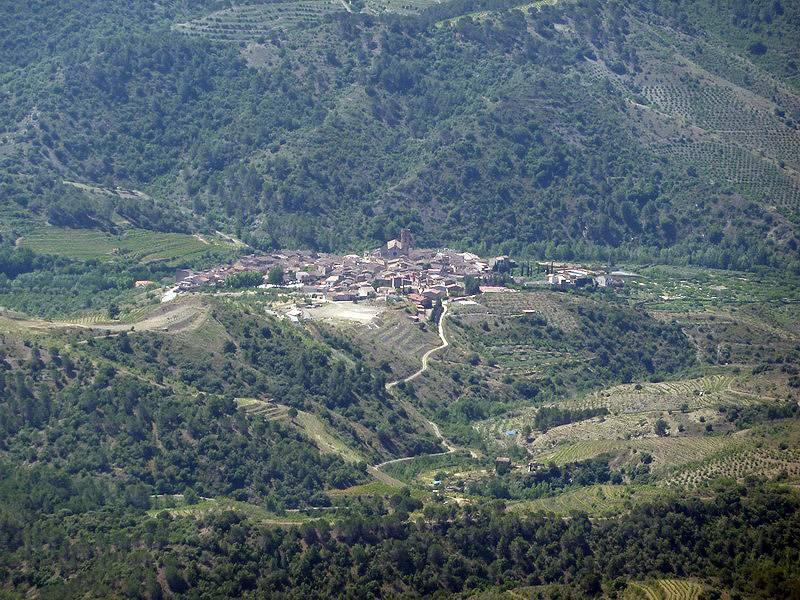 ROCA FALCONERA (El paseo de las águilas en el Montsant) P1100060_resize