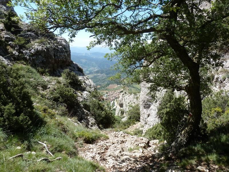 ROCA FALCONERA (El paseo de las águilas en el Montsant) P1100062_resize