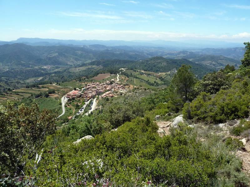 ROCA FALCONERA (El paseo de las águilas en el Montsant) P1100066_resize