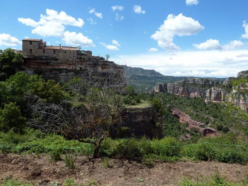 ROCA FALCONERA (El paseo de las águilas en el Montsant) P1100083_resize