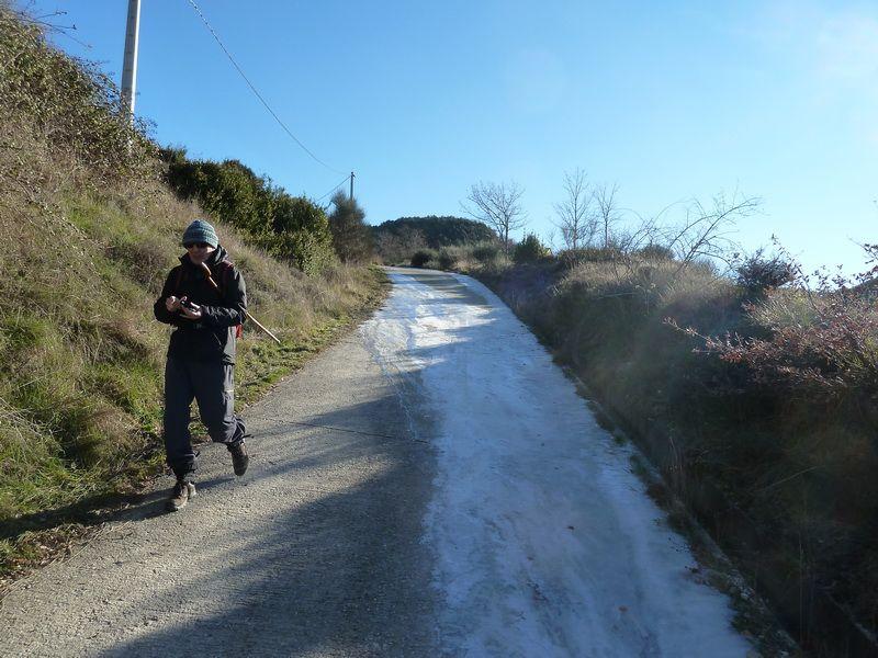 TANGORRI Y DONATSAI (Un paseo invernal) P1100913_resize