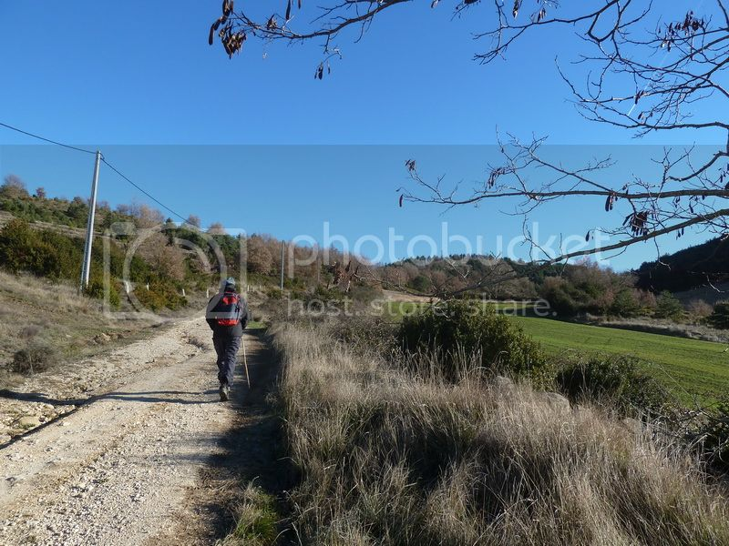 TANGORRI Y DONATSAI (Un paseo invernal) P1100914_resize