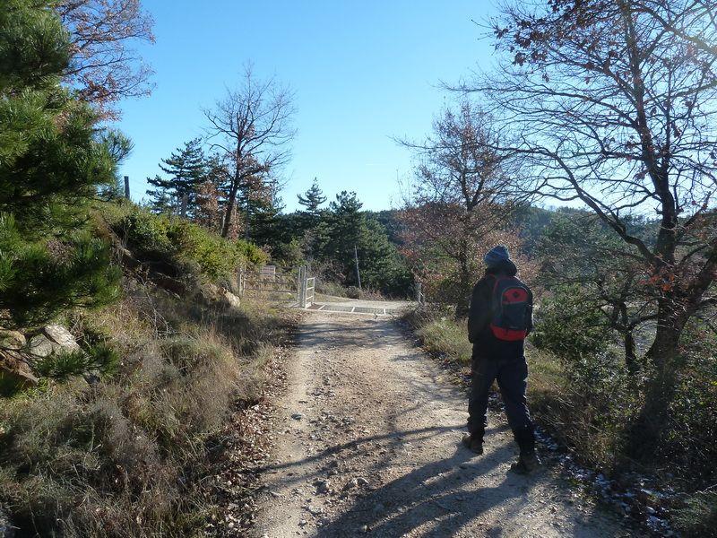 TANGORRI Y DONATSAI (Un paseo invernal) P1100915_resize