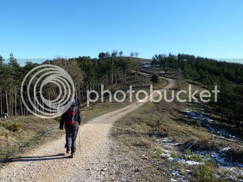 TANGORRI Y DONATSAI (Un paseo invernal) P1100919_resize
