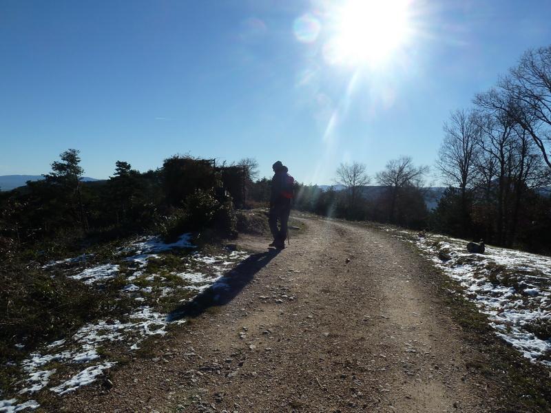 TANGORRI Y DONATSAI (Un paseo invernal) P1100920_resize