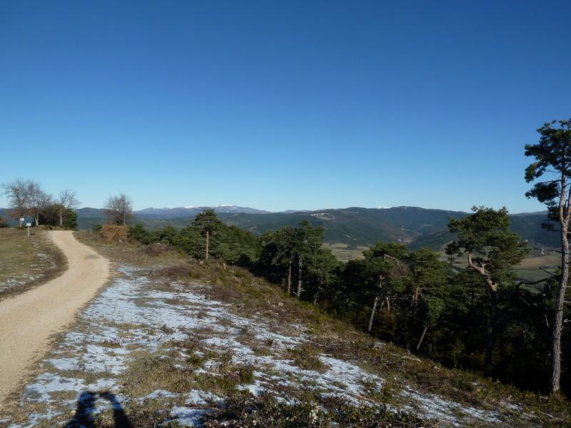 TANGORRI Y DONATSAI (Un paseo invernal) P1100922_resize
