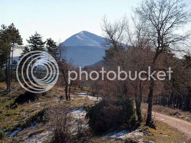 TANGORRI Y DONATSAI (Un paseo invernal) P1100924_resize