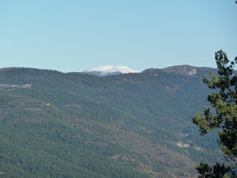 TANGORRI Y DONATSAI (Un paseo invernal) P1100926_resize