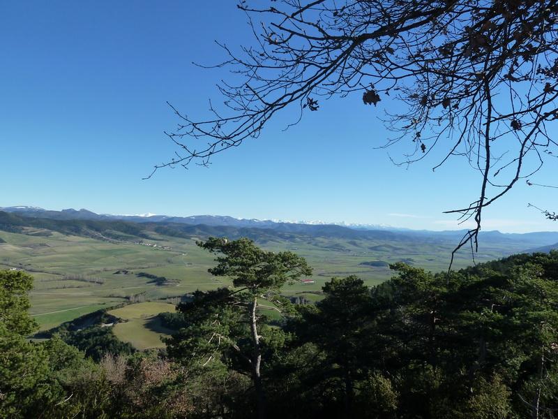 TANGORRI Y DONATSAI (Un paseo invernal) P1100932_resize