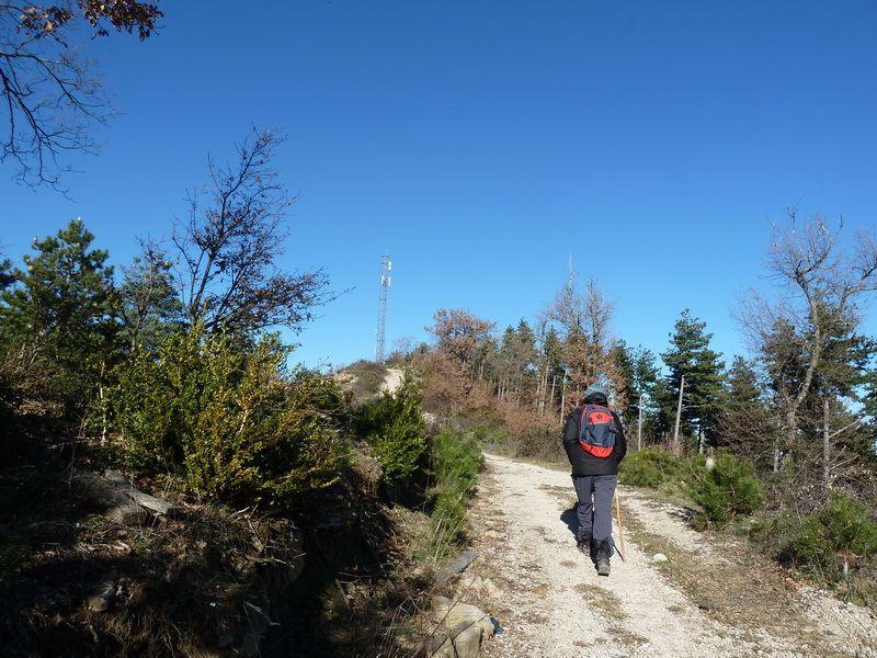 TANGORRI Y DONATSAI (Un paseo invernal) P1100938_resize