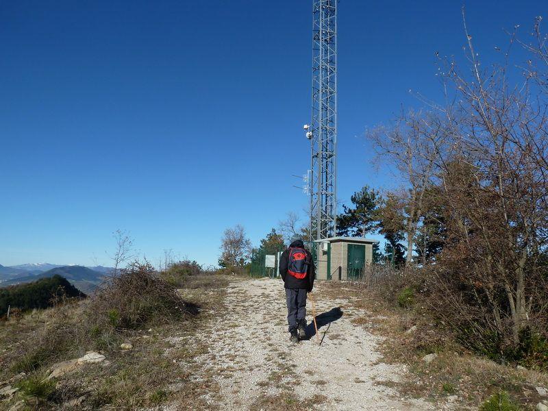 TANGORRI Y DONATSAI (Un paseo invernal) P1100939_resize
