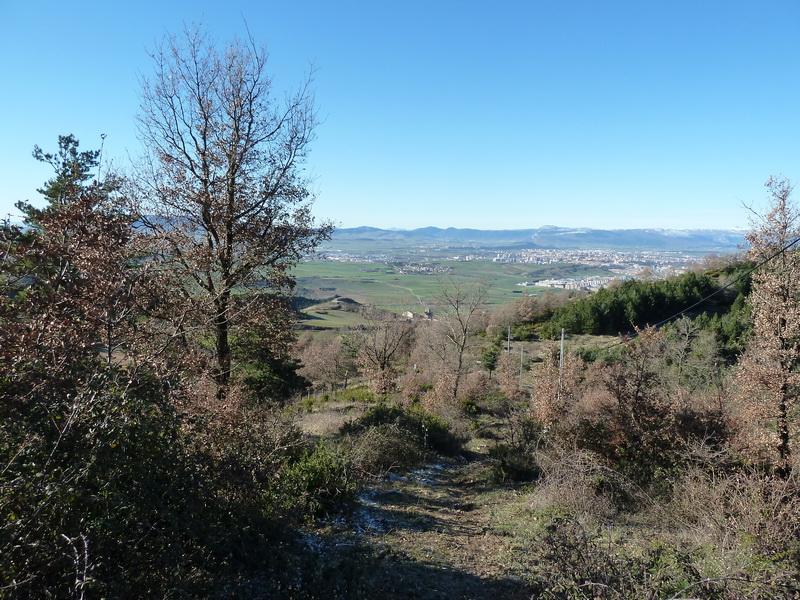 TANGORRI Y DONATSAI (Un paseo invernal) P1100940_resize